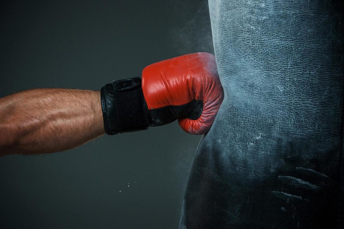 Best Punching and Heavy Bags Fox Boxers